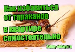 фотография Как избавиться от тараканов в квартире в домашних условиях самостоятельно