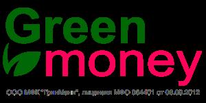 green money logotip
