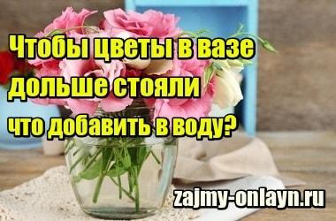 Фото Чтобы цветы в вазе дольше стояли, что добавить в воду