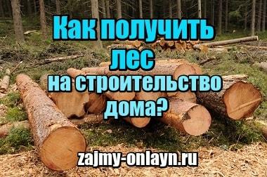 Фото Как получить лес на строительство дома бесплатно