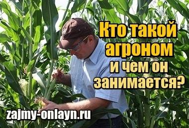 Изображение Кто такой агроном и чем он занимается